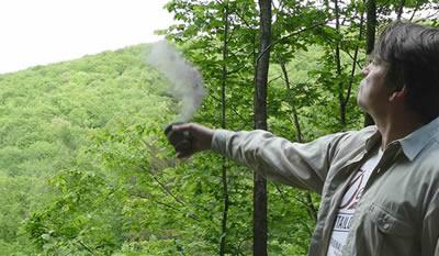 Verstreuen der Asche im Zauberwald als Naturbestattung